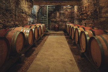 Wine cellar in Burgundy, France
