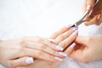 SPA manicure. French manicure at spa salon. Woman hands in a nail salon receiving a manicure procedure. Manicure procedure.