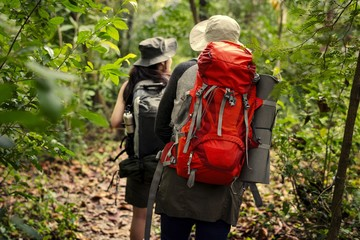 Friends with backpacks trekking through a forest