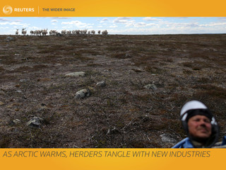 The Wider Image: As Arctic warms, herders tangle with new industries