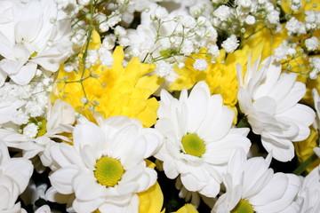 красивый букет цветов желтого и белого цвета из ромашек и астр