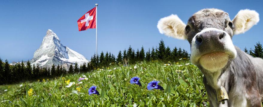 Matterhorn mit Kuh und Schweizer Flagge