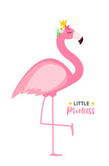Cute Little Princess Abstract  Background with Pink Flamingo Vector Illustration