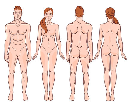 Male and female full body back and front image. Vector illustration set.
