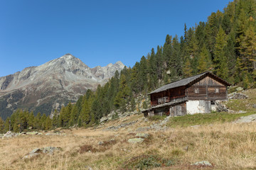 A closed cowshed at fall in front of a mountain meadow