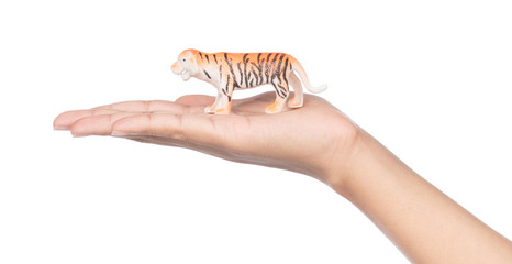 hand holding plastic tiger isolated on white background.