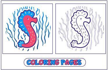 Sea horse Coloring
