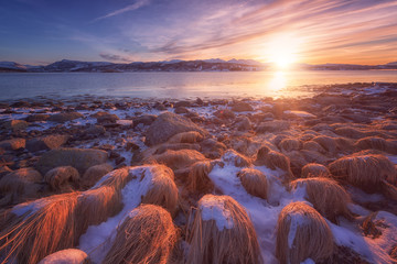 Amazing winter sunset at Lofoten Islands, nature landscape with stones, fjord, mountains and color cloudy sky in sunlight, Gausvik, Northern Norway