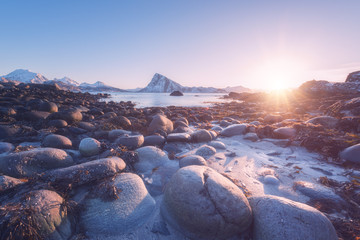 Amazing winter sunset at Lofoten Islands, nature landscape with stones, fjord, mountains and serene blue sky in sunlight, Napp, Northern Norway
