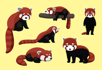 Red Panda Poses Cartoon Vector Illustration