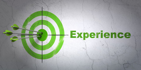 Success finance concept: arrows hitting the center of target, Green Experience on wall background, 3D rendering