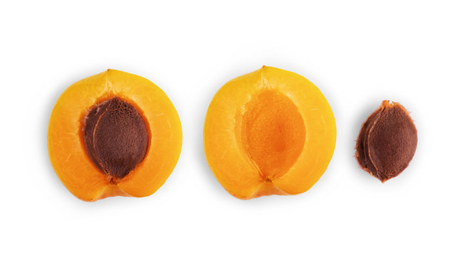 Apricot cut into halves with a bone on white background