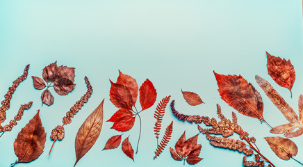 Various  autumn colorful leaves on blue background, top view, border Wall mural