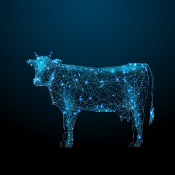 Abstract image of a cow in the form of a starry sky or space, consisting of points, lines, and shapes in the form of planets, stars and the universe. Animal vector wireframe concept