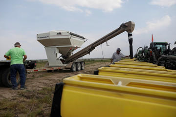 Bruce Edler, 56, a farmer for 40 years, fills seed planters with soybean seed in Gideon, Missour