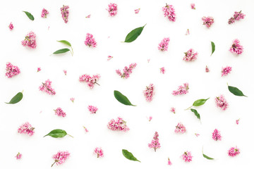 Lilac flowers and green leaves on white background. Flat lay, top view