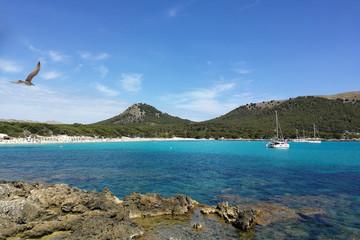 Mallorca, Cala Ratjada, Cala Agulla