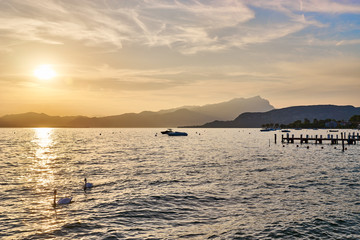 Lake Garda at Sunset with Swans passing by / Next to City of Bardolino