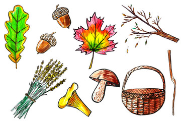 Part 1.Set of hand drawn watercolor autumn icons. Seasonal fall of leaves, basket and mushrooms. Color illustration isolated on white background
