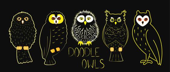 Set of doodle textured outline owls; cute cartoon bird characters; chalk sketch