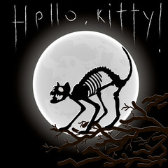 Hello, Kitty! Sarcastic vector illustration. Silhouette of cat's skeletone on the background of the Moon.