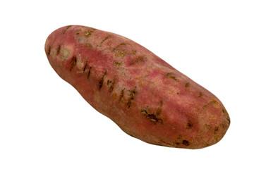 one single sweat potato