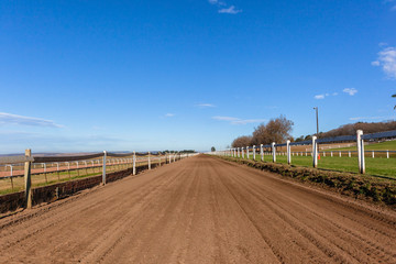 Race Horse Training Sand Grass Tracks Scenic Landscape