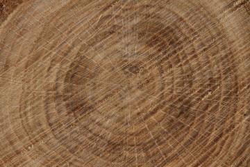 Hintergrund Holz 3