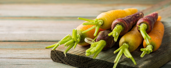 Fresh raw colorful carrots roots, purple, yellow and orange on old wooden table. Healthy food vegetable background with copy space. Banner.