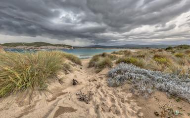 Wall Mural - Dune vegetation Voidokilia beach under storm