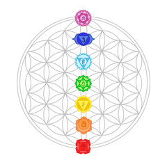 chakra signs with the flower of life - meditation, yoga, esoteric concept