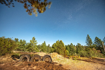 Truck tyres and forest environment with stars at night