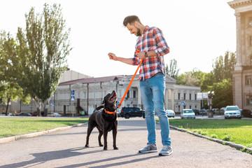 Owner walking his brown labrador retriever outdoors