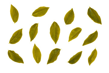 Fototapete - flat lay collection of golden leaf isolated on white background