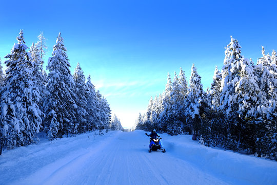 Snowmobiling on Snowy Mountain Road with Snow Covered Pine Trees