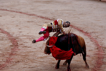 Panamanian bullfighter Luis Bolivar is tossed by a bull on the fourth day of the San Fermin festival in Pamplona,