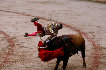 Panamanian bullfighter Luis Bolivar  is tossed by a bull on the fourth day of the San Fermin festival in Pamplona