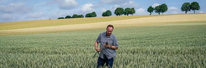 Trockenheit - Dürre, Landwirt prüft Wurzelentwicklung seiner Getreidepflanzen