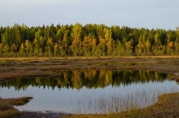 Sunset light - Autumn colours