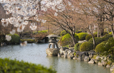 Stone lantern basket in Japanese garden of Toji in Kyoto in Japan with cherry blossoms