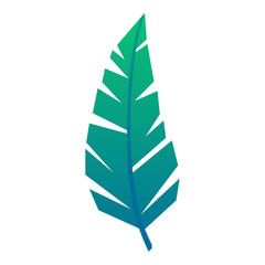 Vector icon tropical jungle green leaf