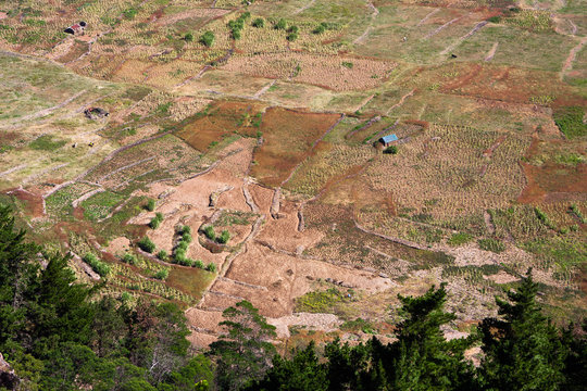 Farmlands inside the extinct volcano,  Cova Crater. Santo Antao, Cape Verde