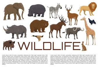 Vector wildlife poster of wild animals
