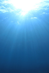 Vertical blue water background
