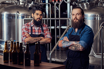 Two interracial hipster full bearded males in a  shirts and aprons working in the brewery.