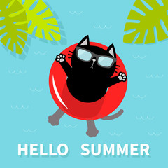 Hello Summer. Black cat floating on red air pool water circle. Sunglasses. Lifebuoy. Palm tree leaf. Cute cartoon relaxing character. Water waves. Flat design.