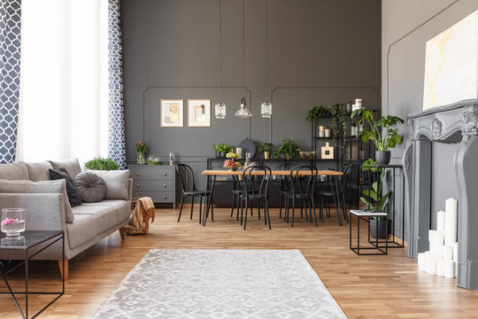 Open space apartment interior with gray sofa next to the window, dining table with black chairs and molding on the walls. Real photo