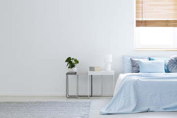 Plant and lamp on table next to blue bed in bedroom interior with copy space and window. Real photo