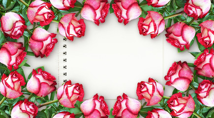 Floral frame with red and white rose flowers