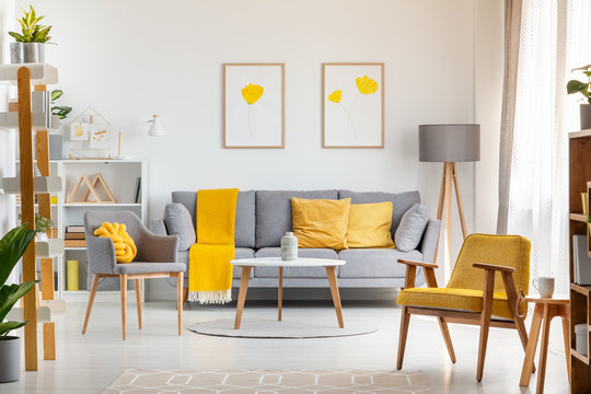 Armchairs and table in grey and yellow living room interior with posters above sofa. Real photo